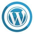 Profesjonalna pomoc i realizacje dla Wordpress